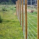 laikinos tvoros